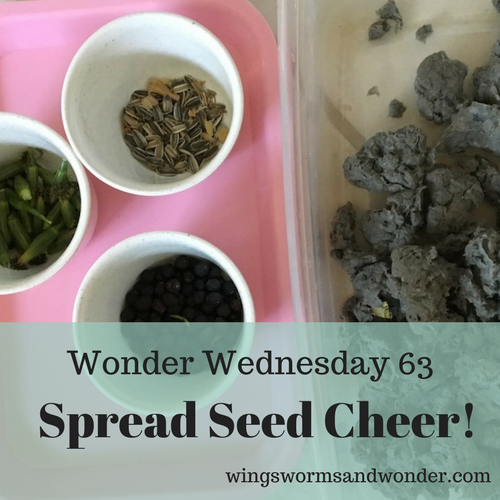 Happy Wonder Wednesday 63! This time of year we seem to have lots of scrap paper, so why not up-cycle it into seed balls? Click to make your own!