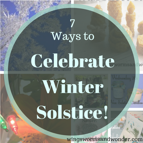 The Winter Solstice is December 21, how will you celebrate? Click for 7 ideas to creatively connect with nature this solstice!