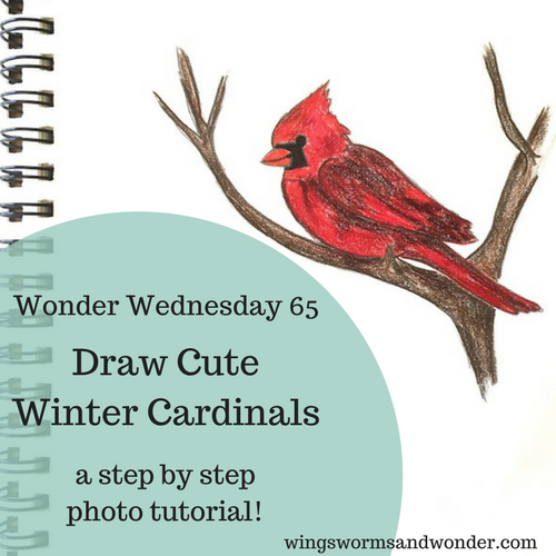 Learn to draw and color northern cardinals step by step! Connect with nature through creativity every day with Wings, Worms, and Wonder!