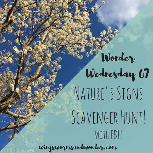 Listen for nature's whispers, seeks nature's signs, and learn to read the book of nature with this Wings, Worms, and Wonder Wonder Wednesday Nature's Signs Scavenger Hunt Activity! Click to join the fun and get your printable!