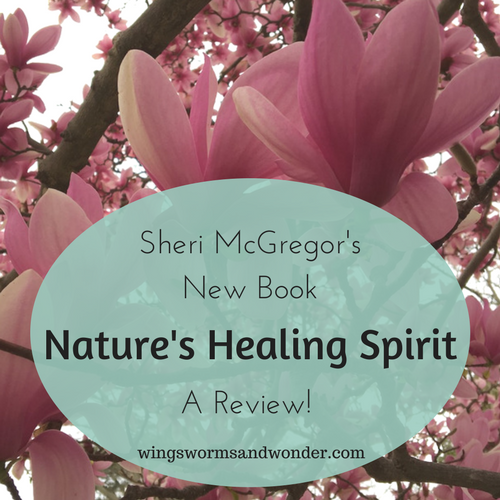 The power of sharing story, nature and flow is the strength behind the book Nature's Healing Spirit: Real Life Stories to Nurture the Soul. Click for review of Sheri McGregor's new book!