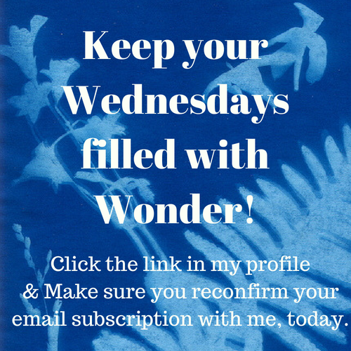 Keep getting Wonder Wednesday emails in your inbox! Click to confirm your subscription.