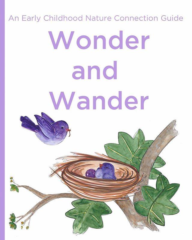 Get your copy of the new Wings, Worms, and Wonder book - Wonder and Wander: An Early Childhood Nature Connection Guide!