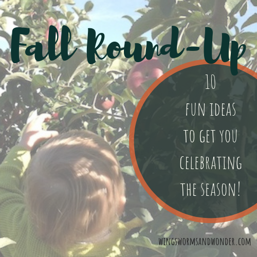 Celebrate fall the Wings, Worms, and Wonder way! Click for 10 fun ideas on how to enjoy fall nature with art, food, and friends!