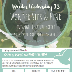 Use your sense of wonder to seek, find, and draw intangible nature findings in this Wonder Wednesday 75 activity and printable by Wings, Worms, and Wonder!