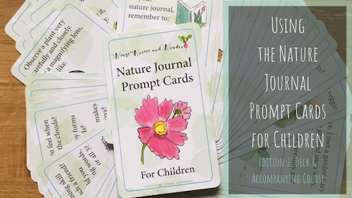 Take your creative nature connections deeper than just a quick fix! Click for Wings, Worms, and Wonder inspiration, ideas, and a sneak peek at the new Nature Journal Prompts Card Deck Edition 2!