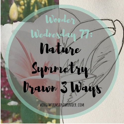 Creatively explore symmetry! Click to draw nature's symmetry 3 ways with Wings, Worms, and Wonder!