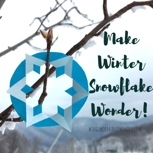 Why do snowflakes have 6 points? Click to learn why and how to make your own 6 sided snowflakes the Wings, Worms, and Wonder way!