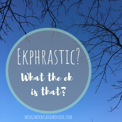 Ekphrasis the word and idea, offers a well of ideas for how we can creatively interpret our encounters with nature's whispers and wonder into our nature art journals. Click to get ideas from Wings, Worms, and Wonder!