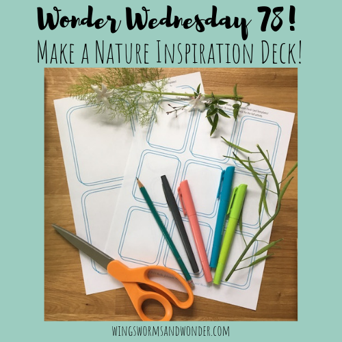 Decks of all sorts are the rage these days. Why not make your own!? Click for the Wonder Wednesday 78 activity and make a nature inspiration deck!