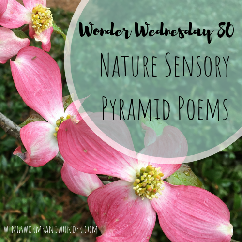 Click to take a Wonder Wednesday 80 poetry walk and to make a nature sensory pyramid poem!