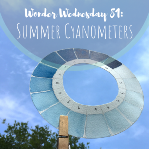 Create your own cyanometer and track blue skies throughout the seasons in your nature journal! Click to make your own with Wings, Worms, and Wonder and discover what blue sky wonders reveal themselves to you over time!