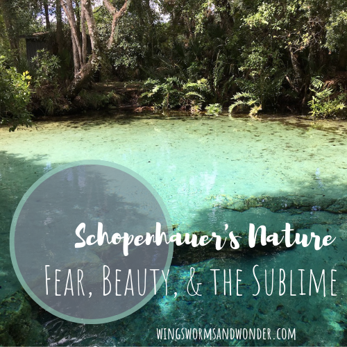 Explore with Wings, Worms, and Wonder Schopenhauer's idea of how frightening aspects of nature can brings sublime awe. Click to hear my rattlesnake story!