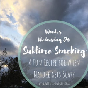 See the sublime beauty of severe weather the Wings, Worms, and Wonder way! Click to get your Wonder Wednesday activity recipe for tasty nature danger fun!