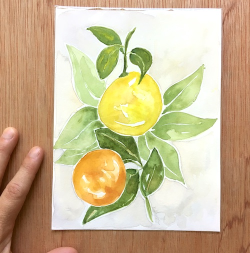 Citrus Season tradition, stories, and inspired gifts to brighten your days! Click here for the Wings, Worms, and Wonder scoop on citrus!
