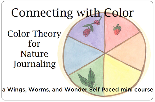 Creatively connect with nature in a Wings, Worms, and Wonder online nature painting class!