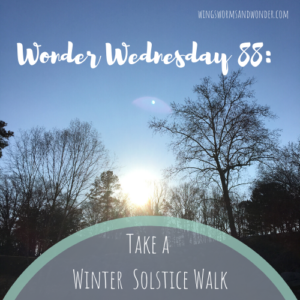The longest night of the year is rich with history, culture, and story! Click to join me in a Wings, Worms, and Wonder Solstice Walk celebration