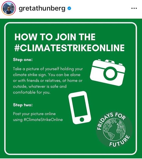 fridays for future, greta thunberg