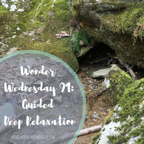 For Wonder Wednesday 91 activity, I figured people could use a bit of stress relief. Click for a guided deep relaxation a la Wings, Worms, and Wonder style!