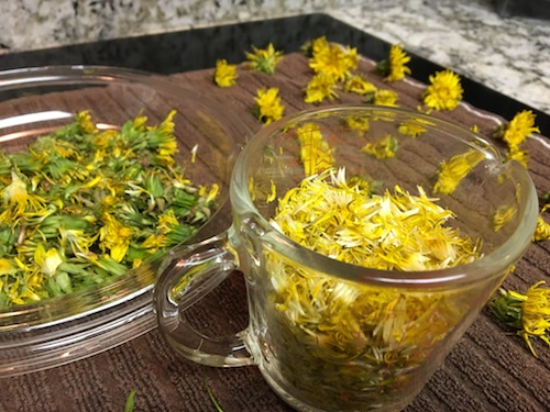 Create the ultimate spring cake from dandelion flowers! Click for the Wings, Worms, and Wonder vegan recipe to celebrate the cheerful dandelion!
