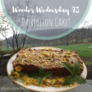 Create the ultimate Wonder Wednesday spring cake from dandelion flowers! Click for the Wings, Worms, and Wonder recipe to celebrate the cheerful dandelion!