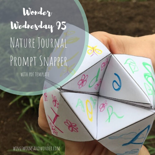 Kick off International Nature Journaling Week with a nature journal prompt snapper! Click for the Wings, Worms, and Wonder project and template!