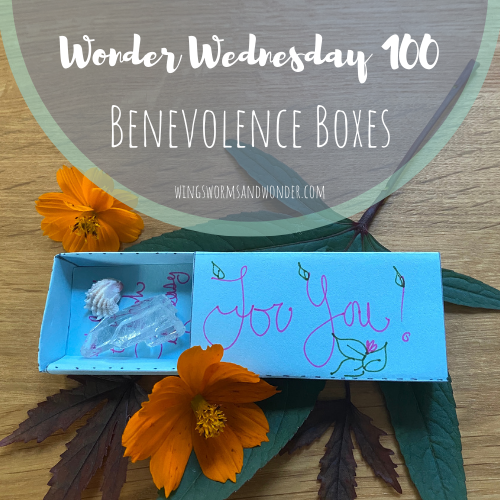 It's the 100th Wonder Wednesday activity! Click to Join Wings, Worms, and Wonder in making & scattering benevolence boxes to spread like seeds of kindness!