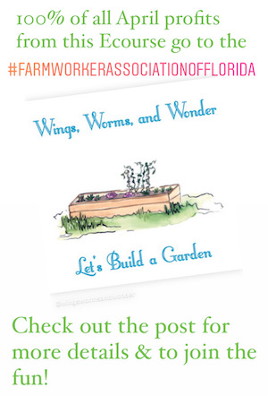 Grow your own garden step-by-step with Wings Worms and Wonder!